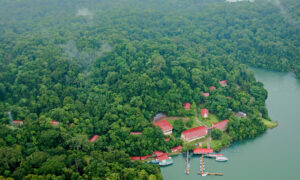 The Smithsonian Tropical Research Institution (STRI) in Panama