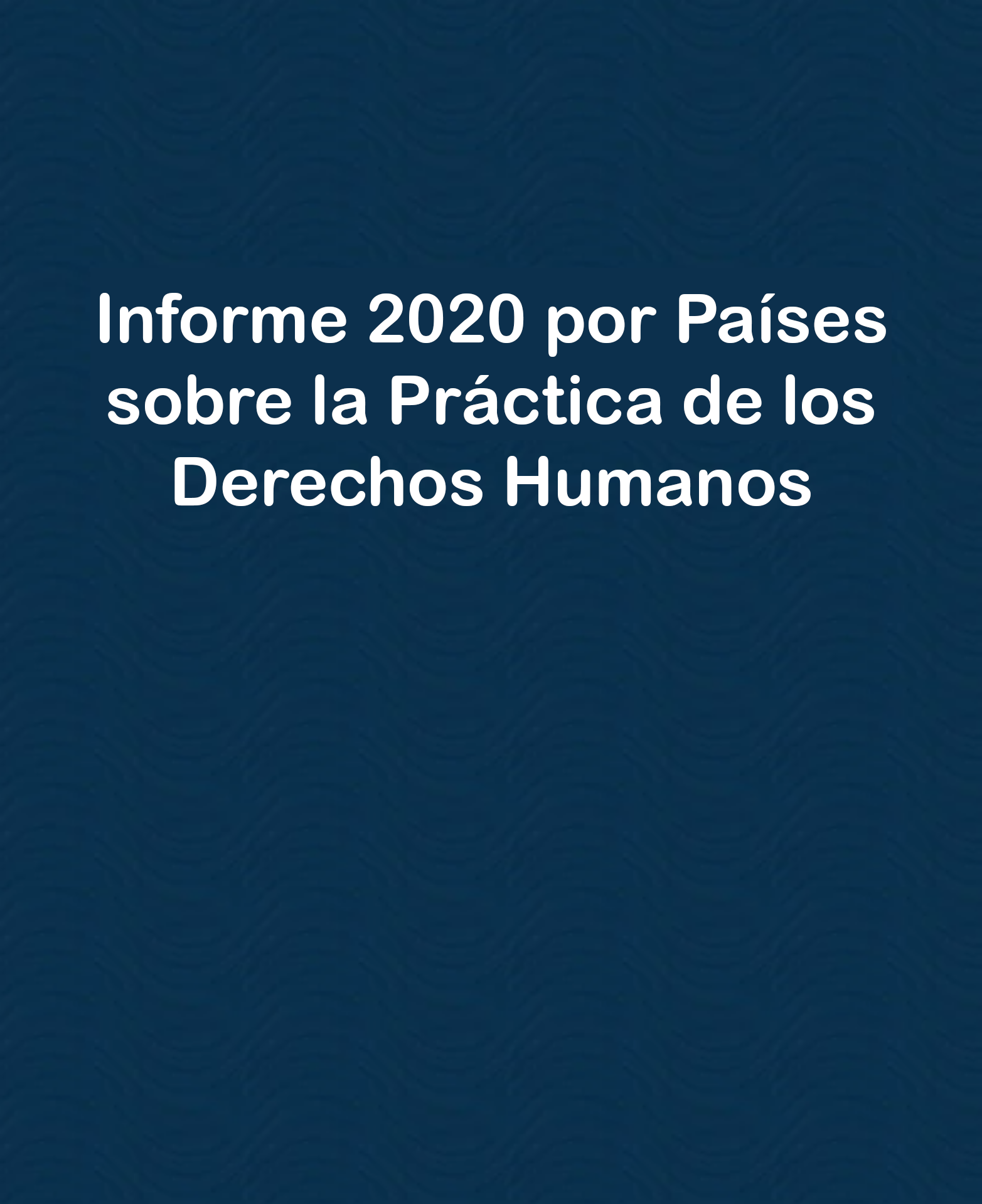 Informe-2020-sobre-la-practica-de-los-derechos-humanos