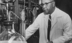 Chemist Percy Lavon Julian working in his lab.  (Photo by Francis Miller/The LIFE Picture Collection via Getty Images)