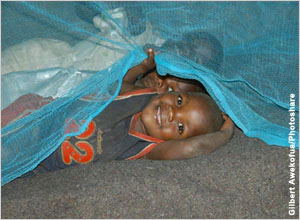 A child under a mosquito net